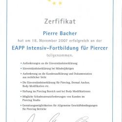 2007-11-18 EAPP Intensiv-Fortbildung