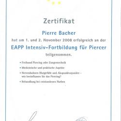 2008-11-02 Zertifikat Intensiv-Fortbildung